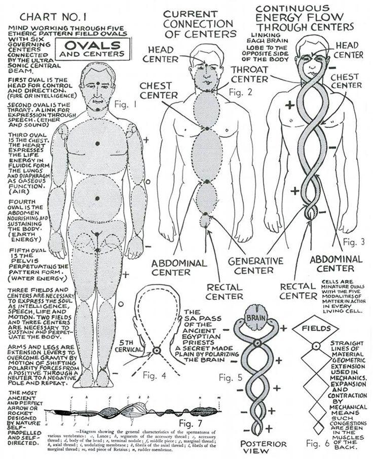 Terapia da Polaridade, uma mistura de ciência moderna e da medicina complementar, é um sistema de saúde abrangente, que envolva carroçaria à base de energia, dieta, exercício, e auto-conhecimento. Cientificamente, trabalha com o campo de energia humano, padrões eletromagnéticos expressos em relações experiência-energético mentais, emocionais e físicos são a base de todos os fenômenos.