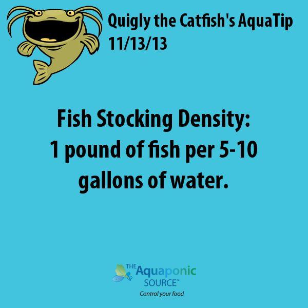 Fish Stocking Density: 1 pound of fish per 5-10 gallons of water. #aquaponics…