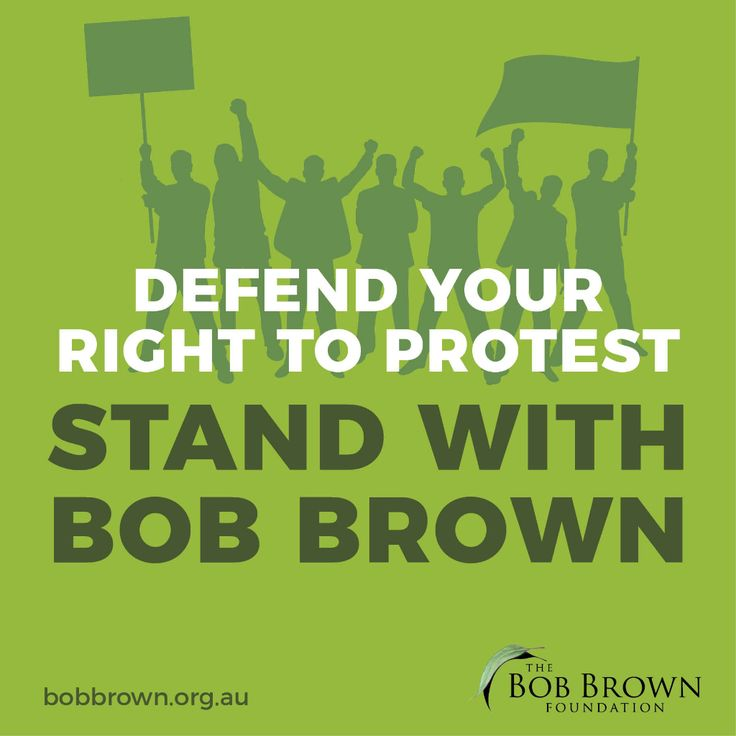 Bob Brown is taking on the most important High Court case of its kind in recent history, fighting for all Australians' right to protest. In 2016, Bob Brown and Jessica Hoyt were arrested for peacefully protesting against logging at Lapoinya in NW Tasmania.They were charged under Tasmania's hars