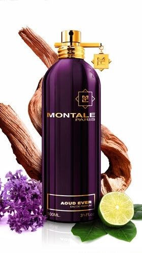 Aoud Ever MONTALE #montale