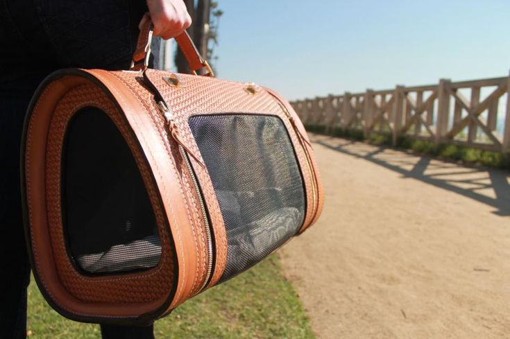 luxury-leather-pet-carrier-B-Winston-Designs-Etsy #cat #design #home