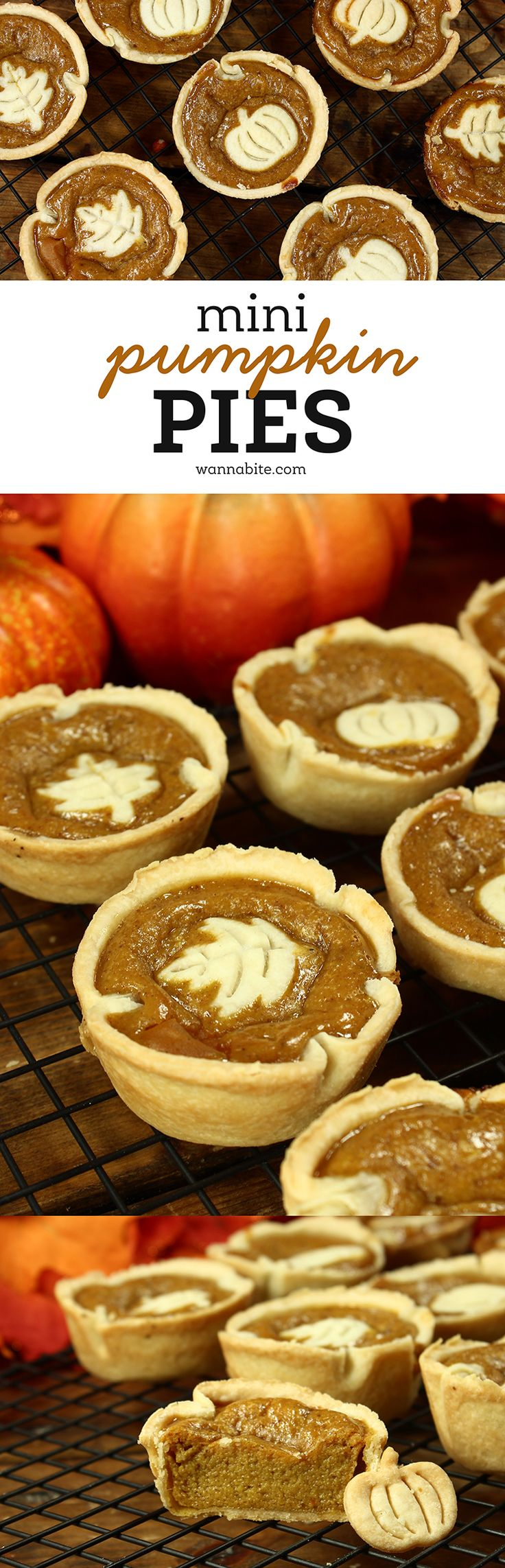 Super easy mini pumpkin pies! We added a little garnish on the top and they are PERFECT for a party or a family dinner. They are sure to impress! via @Wannabite