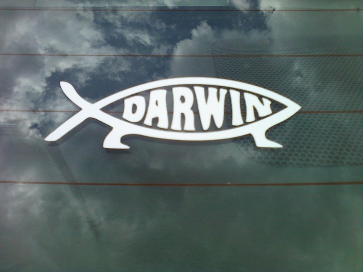 76 best hunting fishing images on pinterest boy for Hunting and fishing decals