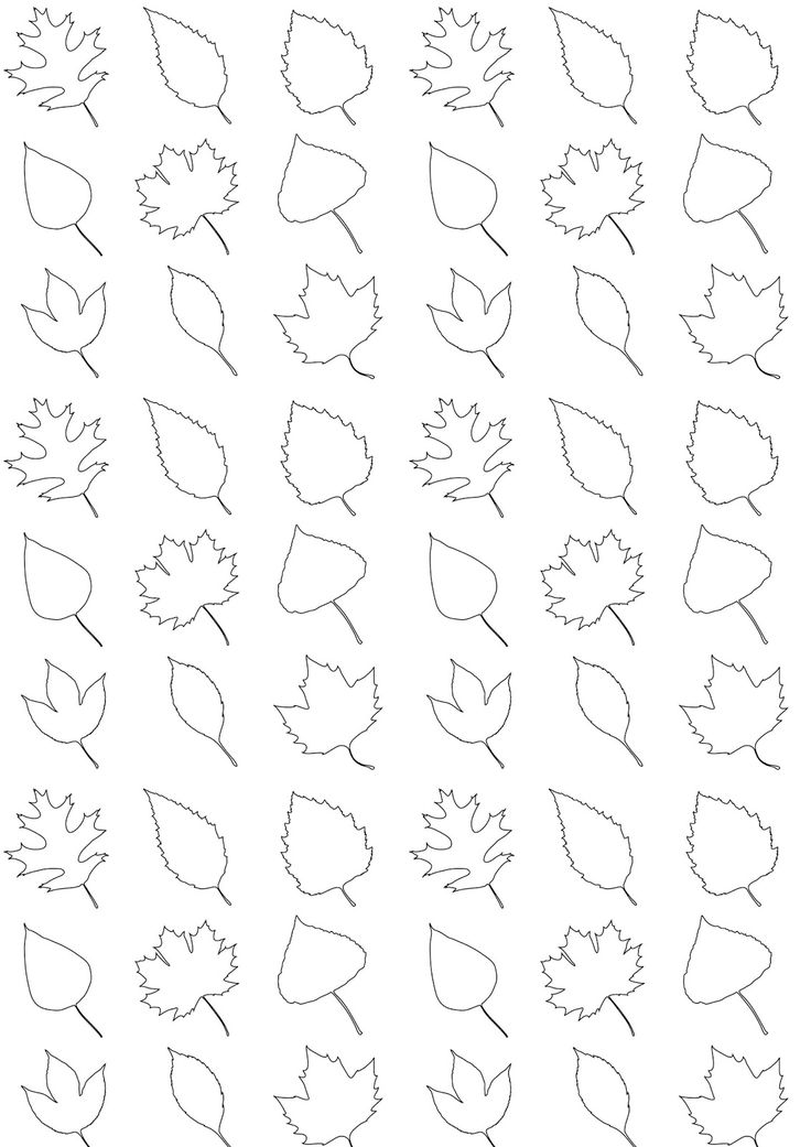 FREE printable leaves pattern paper - color it and make it a one-of-a-kind wrapping paper! ^^ #blackandwhite #fall