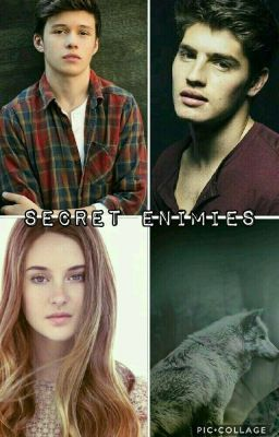 "I just published ""Chapter 24 - Overreaction"" of my story ""SECRET ENIMIES""."