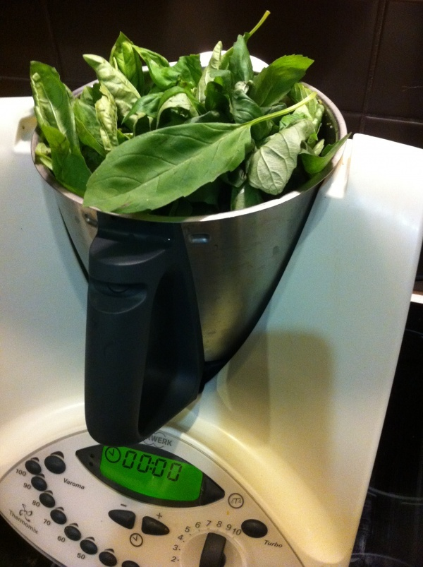 Do you have a Basil plant screaming out to be used.......Pesto!