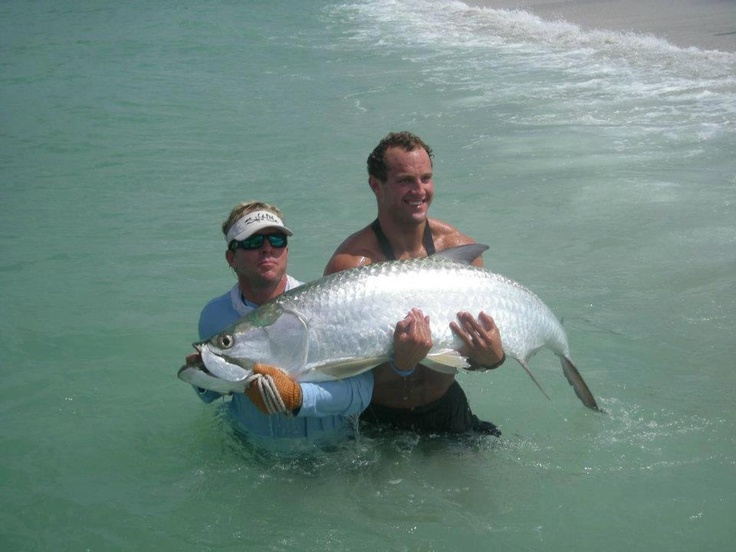 Tarpon fishing charters out of boca punta gorda fort for Captiva island fishing charters
