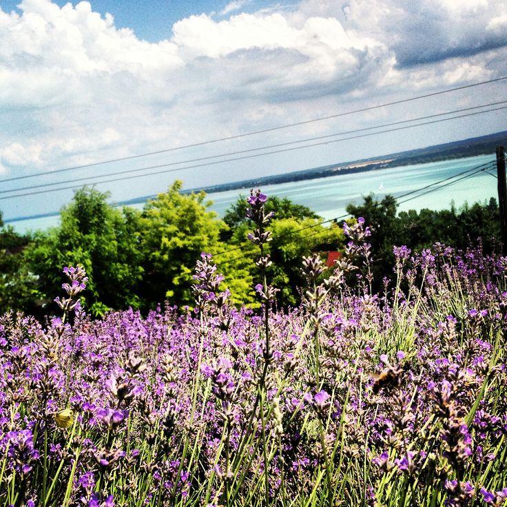 Nekünk a Balaton a Riviéra_PannaLiz