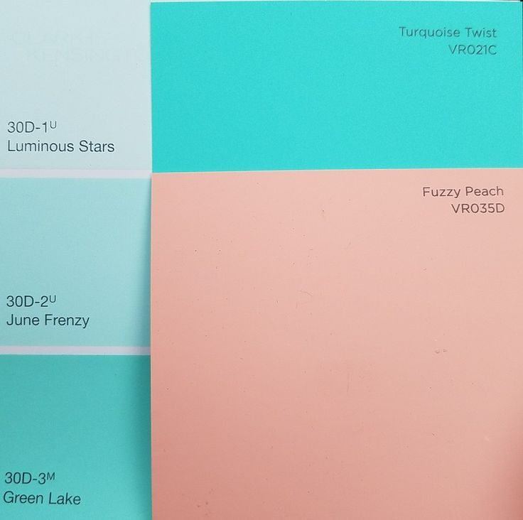 Paint swatches from Ace Hardware. Valspar and Clark+Kensington brands.