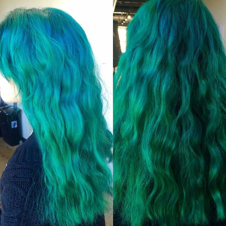 Arctic fox aquamarine melted into forest green.