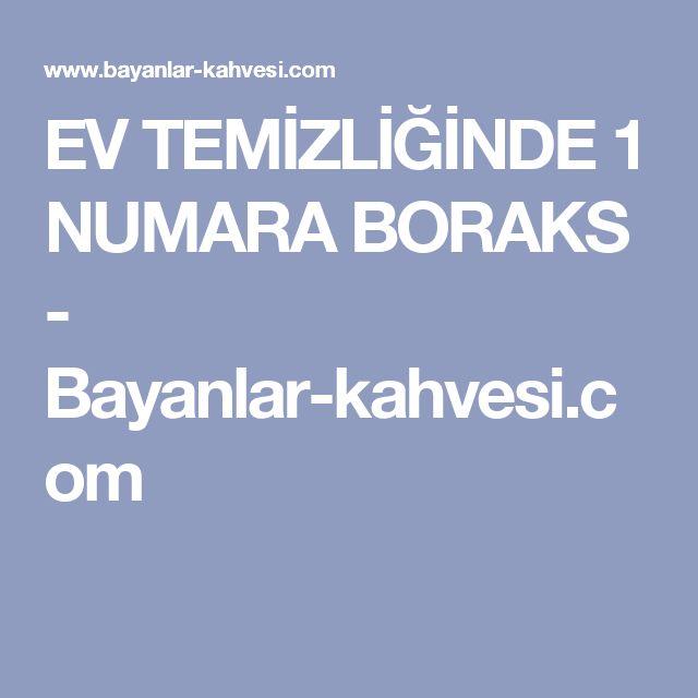EV TEMİZLİĞİNDE 1 NUMARA BORAKS - Bayanlar-kahvesi.com