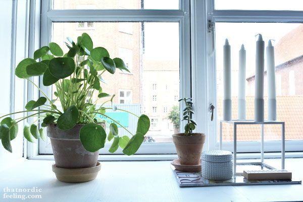 Window sill via that nordic feeling