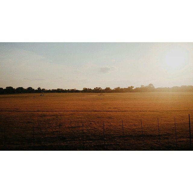 Yusssssis... #Limpopo, you have been #beautiful  #travel #sunset #wanderlust #instatravel #vscocam #vsco #safari #SquareInstaPic