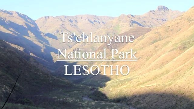 Lesotho's largest national park, Ts'shlanyane, protects a spectacular high-altitude wilderness.