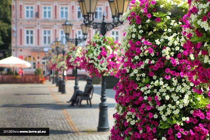 flower tower by Terra in Świebodzin, Poland