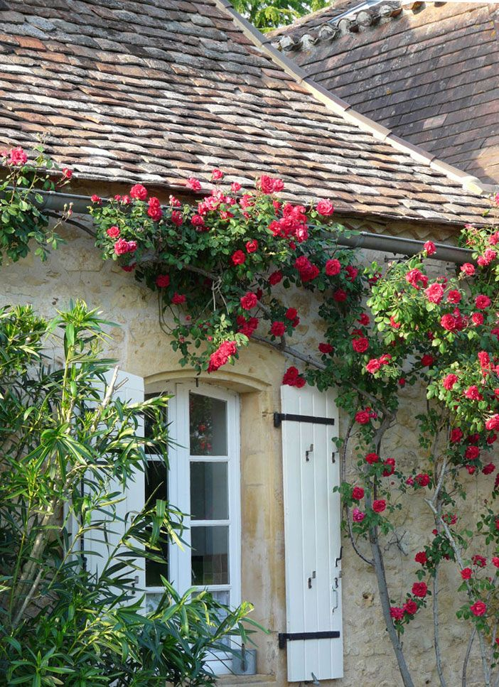 Best 25 french cottage garden ideas on pinterest french for Small french country cottage