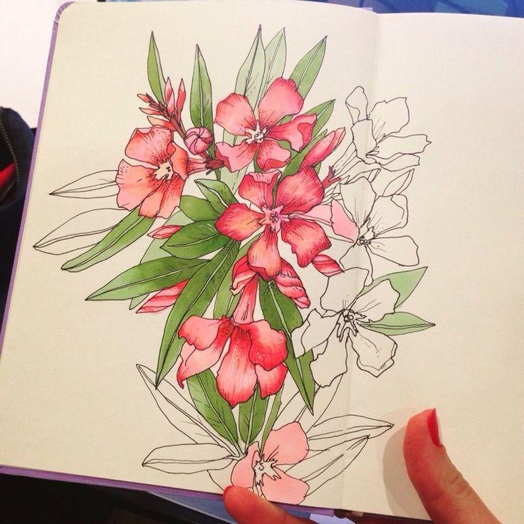 #sketh #flowers
