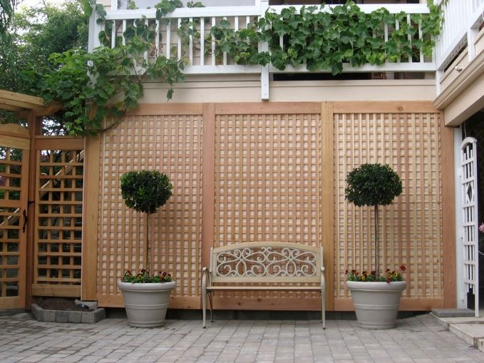 The 25 best wisteria pergola ideas on pinterest modern for Wall trellis ideas