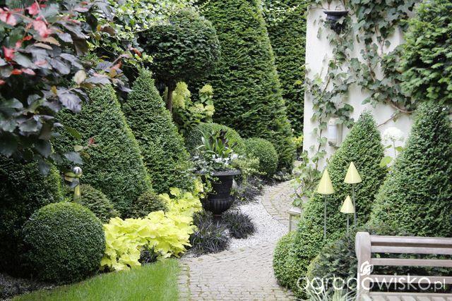 Ogród nie tylko bukszpanowy - część III - strona 644 - Forum ogrodnicze - Ogrodowisko