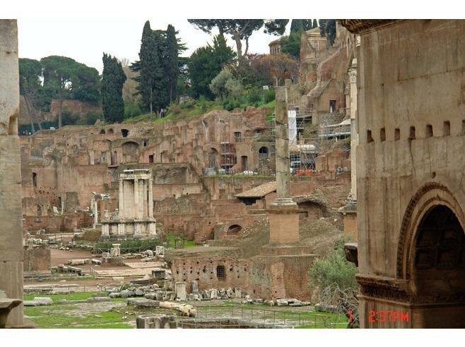 rome temple of vestal vergins | Roman Forum - Temple of the Vesta - Vestal Virgins, Rome 47 Insider ...