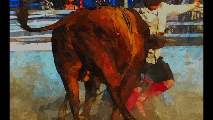 Jordynn Swanson - Bullfighter - Back Fade at The Richer Rough Stock Rodeo in Richer, Manitoba