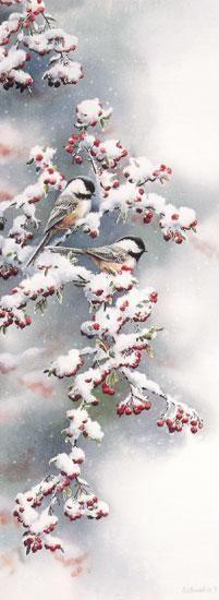 Winter Morning - Chickadee by Susan Bourdet, (watercolor)
