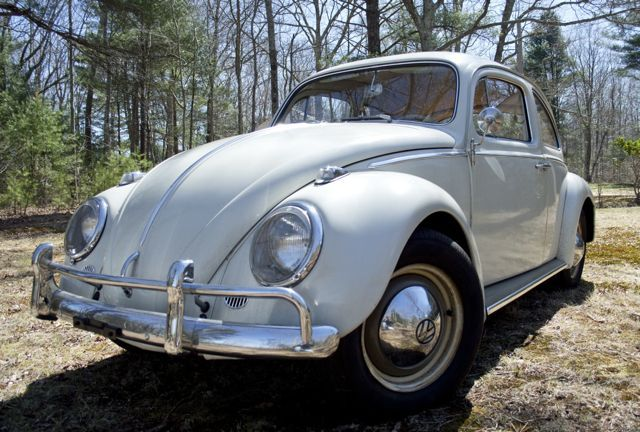 1000 ideas about vw beetle for sale on pinterest vw bugs volkswagen beetle vintage and. Black Bedroom Furniture Sets. Home Design Ideas