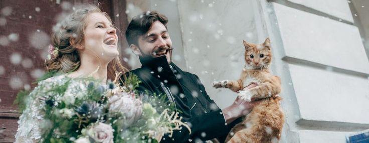 Свадебный фотограф Натали Малова | Свадьба