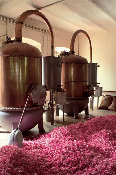 Alembic pour distillation - Alembic for distillation #FragonardFactory #Fragrance #Process #Grasse Fragonard PARFUMEUR