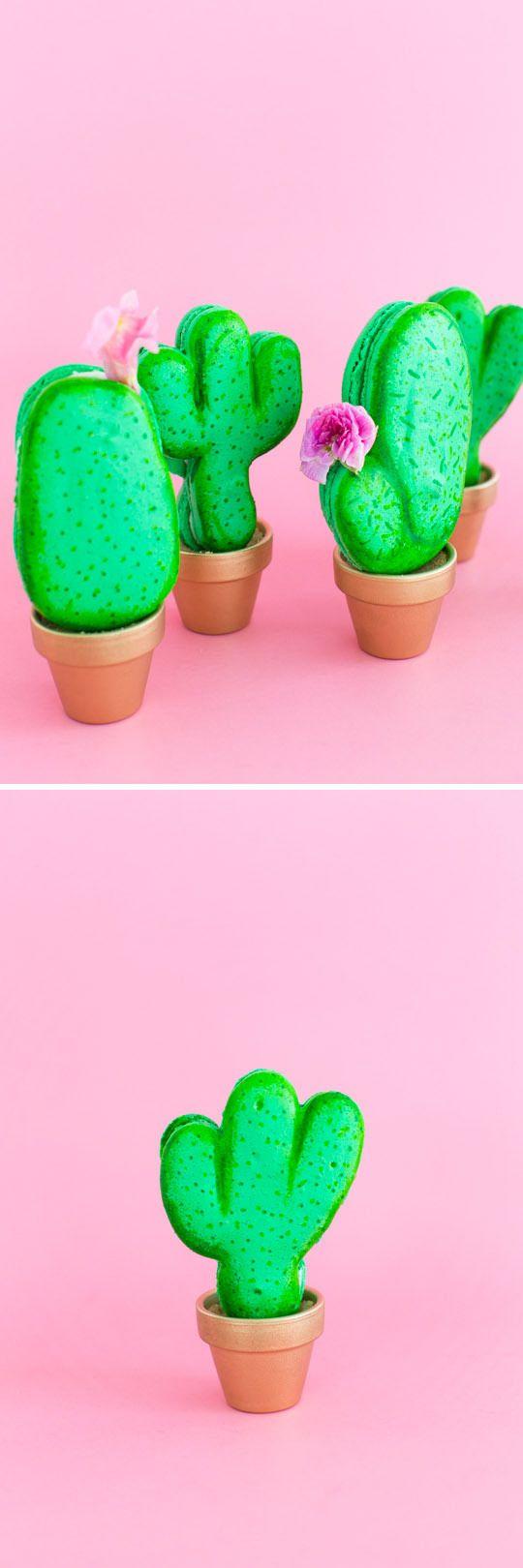 DIY potted cactus macarons | sugar & cloth