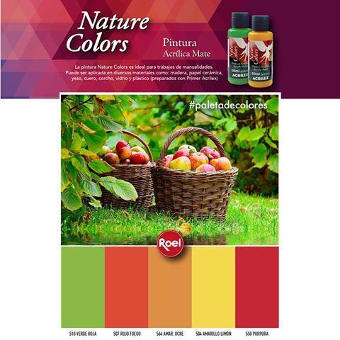 #NatureColors #Paletadecolores
