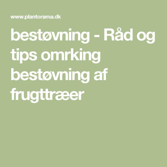 bestøvning - Råd og tips omrking bestøvning af frugttræer