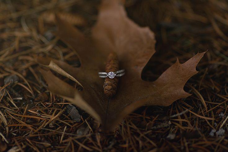 Dreamland Photography | New Brunswick wedding photographer | Destination Wedding Photographer | Italian Wedding Photographer | France Wedding Photographer | Ireland Wedding Photographer | Engagement | Winter