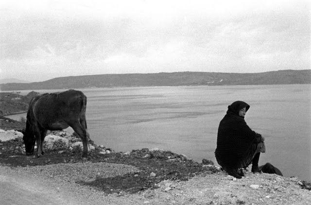 Γυναίκα στην όχθη-Κρήτη 1955