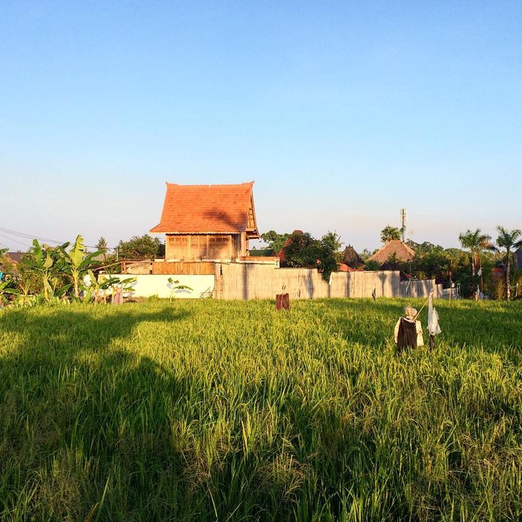 Where ever we go we take a wander around the area to check it out. This is Canggu. What I love about Canggu is just how many rice paddy fields there are still with so many villas mixed in. . .