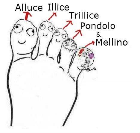 Risultati immagini per nomi dita piedi