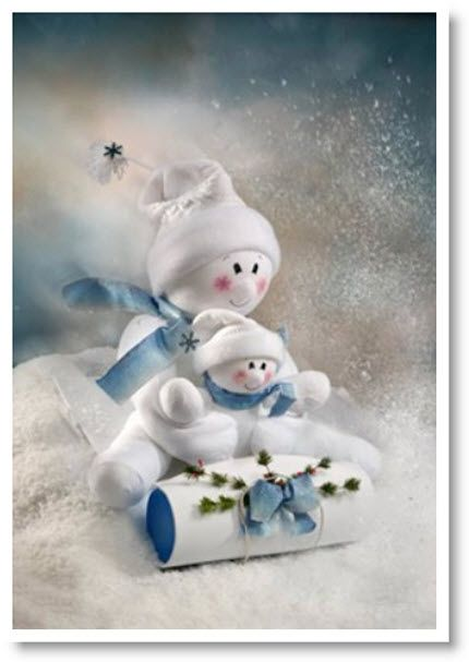 Sledding Snow buddies Instructions