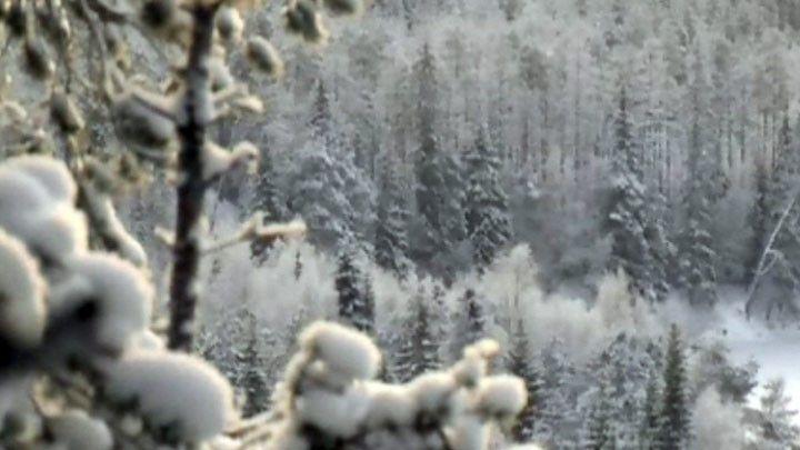 Talvisessa Vaara-Suomessa | Elinympäristöt | Oppiminen | yle.fi (Video 14 min.)