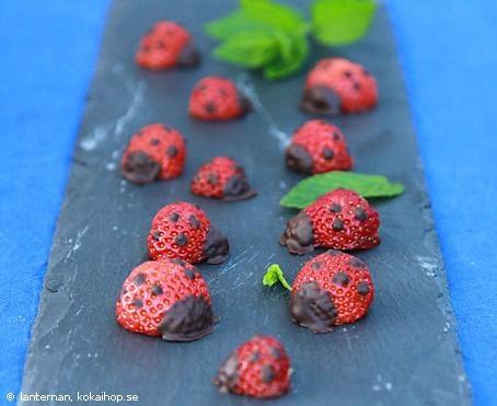 Nyckelpigor av jordgubbar
