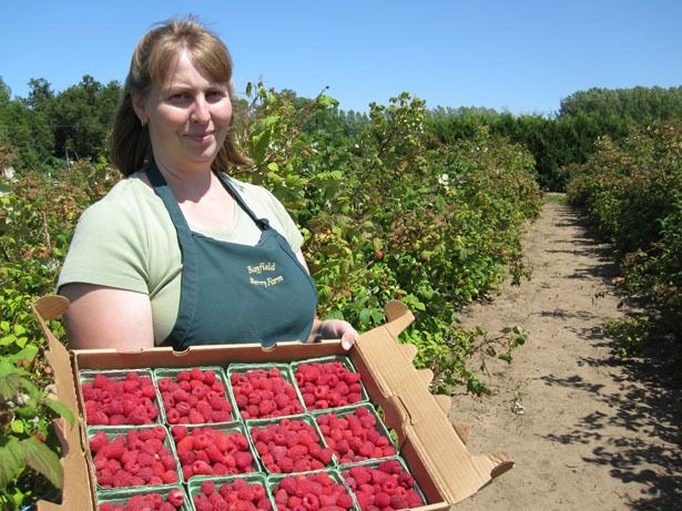 The Bayfield Berry Farm----weekend Breakkii fantastic