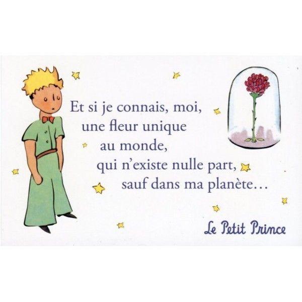 Le Petit Prince Saint Exupéry