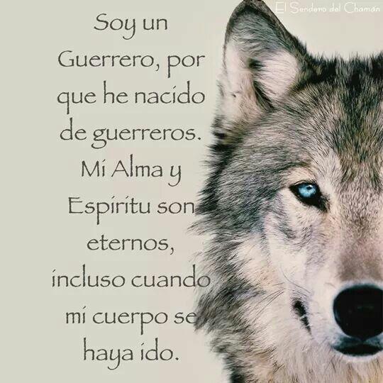 #guerrero #alma #espiritu