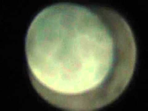▶ Moon Orbit Wrong Cornell University - YouTube. 2/24/2011 ... signs in the heavens!