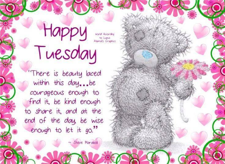 Happy Tuesday good morning tuesday tuesday quotes happy tuesday tuesday images good morning tuesday tuesday quote images