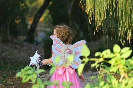Wild-Rose Fairy Wings