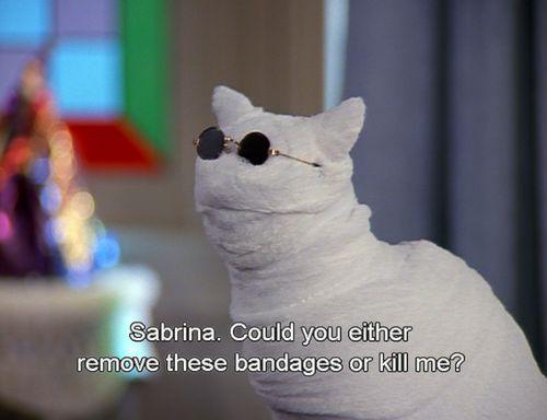 Sabrina The Teenaged Witch
