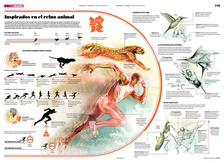 1000+ images about Infographics on Pinterest | History of film ...