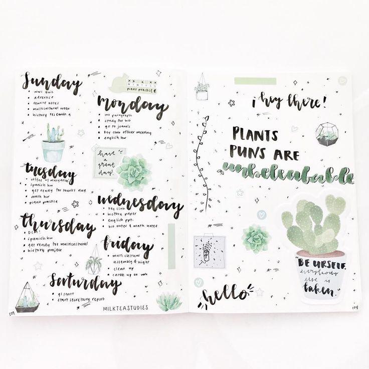 bullet journal idea : cactus