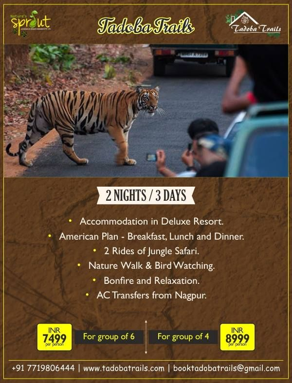 Resort In Tadoba Tour Packages For Tadoba Jungle Safari Booking In Tadoba Hotels In Tadoba Activities In Tadoba Hom Walking In Nature Resort Tour Packages