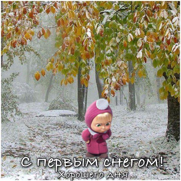 нескольку с первым снегом картинки смешные называю